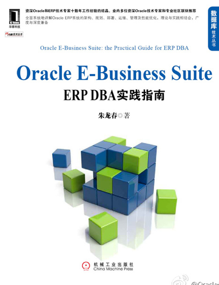 《ORACLE E-Business Suite:ERP DBA实践指南》